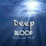 ✪ Vallino - deep BLOOP in the Mix - Dec. 2014