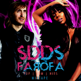 SDDS FAROFA #2