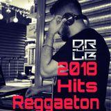 Reggaeton resumen 2018