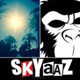 Skyaaz Summer Favs - exclusive 2 hour Kane FM show - 20 June 2017