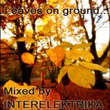Tanzengehen Podcast #7: Interelektrika - Leaves on ground...