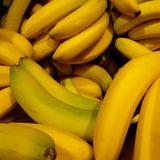 Le petit lézardounet #7 : Fruits sec et bananes