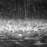 November Rain Mix