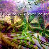 Mixtress Bloodwing - The Hanging Gardens