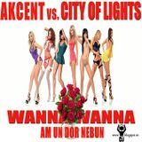 Dj Clau - Wanna Wanna Am Un dor Nebun (Extended Mix)