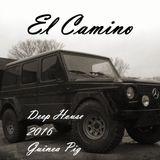El Camino @ HdR Louvain by Guinea Pig