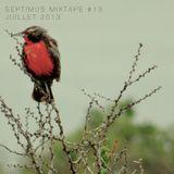 Mixtape #13 JUILLET 2013