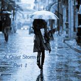 A Quiet Storm - Part 1