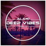 Deep Vibes Vol.17