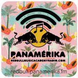 Red Bull Panamérika No. 342 - Mi camisa de palmeras