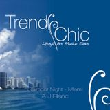 Trendy Chic - Glamour Night in Miami - A.J.Blanc