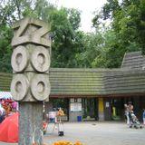 Polskie Zoo. To ludzie zwierzętom zgotowali ten los