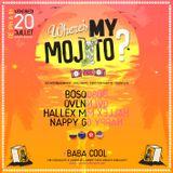 QVLN (LIVE), Bosq (DJ), Nappy G (Percussions) at Baba Cool, Montalivet