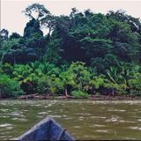 Lola Villa – Tierra Alta Mix (Tropical Spring)