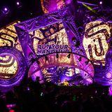 Dimitri Vegas & Like Mike & Futuristic Polar Bears & Wolfpack - STH Stage, Tomorrowland Brazil 2016
