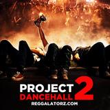 PROJECT DANCEHALL 2 by Reggalatorz Sound (2013 Dancehall Mix)