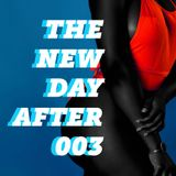 The New Day After 0003