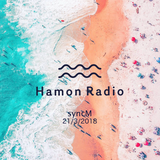 #23 syncM w/ Hamon Radio @NakameguroLounge, Tokyo
