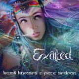 Kwali Kumara & Pete Ardron - Exalted - album taster mix