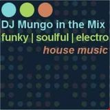 DJ Mungo in the Mix (321)