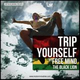TRIP YOURSELF (2012)