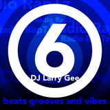 beats grooves and vibes 6