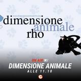 Andrea e Mago Diego intervistano le volontarie di Dimensione Animale - #Happydays 03 Ottobre 2018