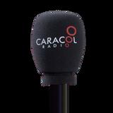 Caracol Radio se internó en el mundo de las rumbas de los adolescentes de colegio.