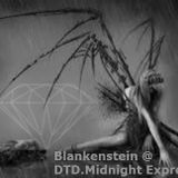 Blankenstein @ DTD.Midnight express 13/2/2016