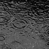 Rain Mix 11/04/2012