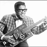National Bo Diddley Day