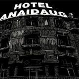 Entrevista - Hotel Anaidaug - 17Março 2014