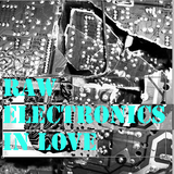 Raw Electronics In Love