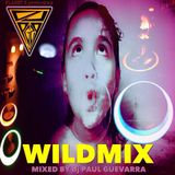 WILDMIX by djPG29