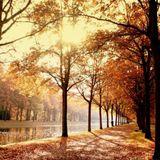 November Rain ...