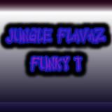 Funky T - Jungle Flavaz