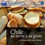 Chile su Tierra y su Gente 06 de Dic 2015, Programa 321