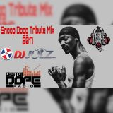 DJ JULZ (HOOLZ)-THE REWIND (SNOOP DOGG TRIBUTE MIX)-DIGITAL DOPE RADIO