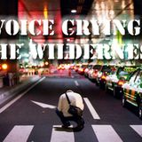Voice Crying in the Wilderness - Audio