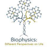 Biophysics S08
