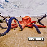 Deep Woods - DISTRIKT Music - Episode 151