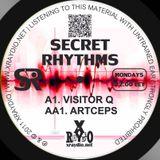 Visitor Q - Secret Rhythms #28