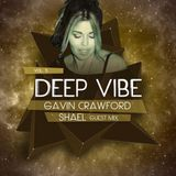 Underground Sound Presents Deep Vibe Vol. 5 By Gavin Crawford and Guest Shael