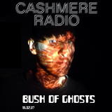 Bush of Ghosts #10 with David Tinning 11.02.17