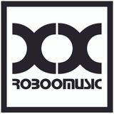 Roboomusic podcast 31 _ Electro new year's eve 2014 (only vinyl set)