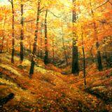Aullithical - Autumn Mix