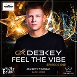 Deekey - Feel The Vibe 043 (Which Bottle - New Year 2018) [Record VIP House] (28.12.2017)
