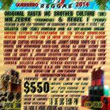 Ecologikal Reggae 2014 set