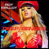 Deep Senses Radio 011 - Roy Malloy (Guestmix by Selim Gaston) [March 2014]
