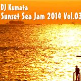 Sunset Sea Jam 2014 Vol.03